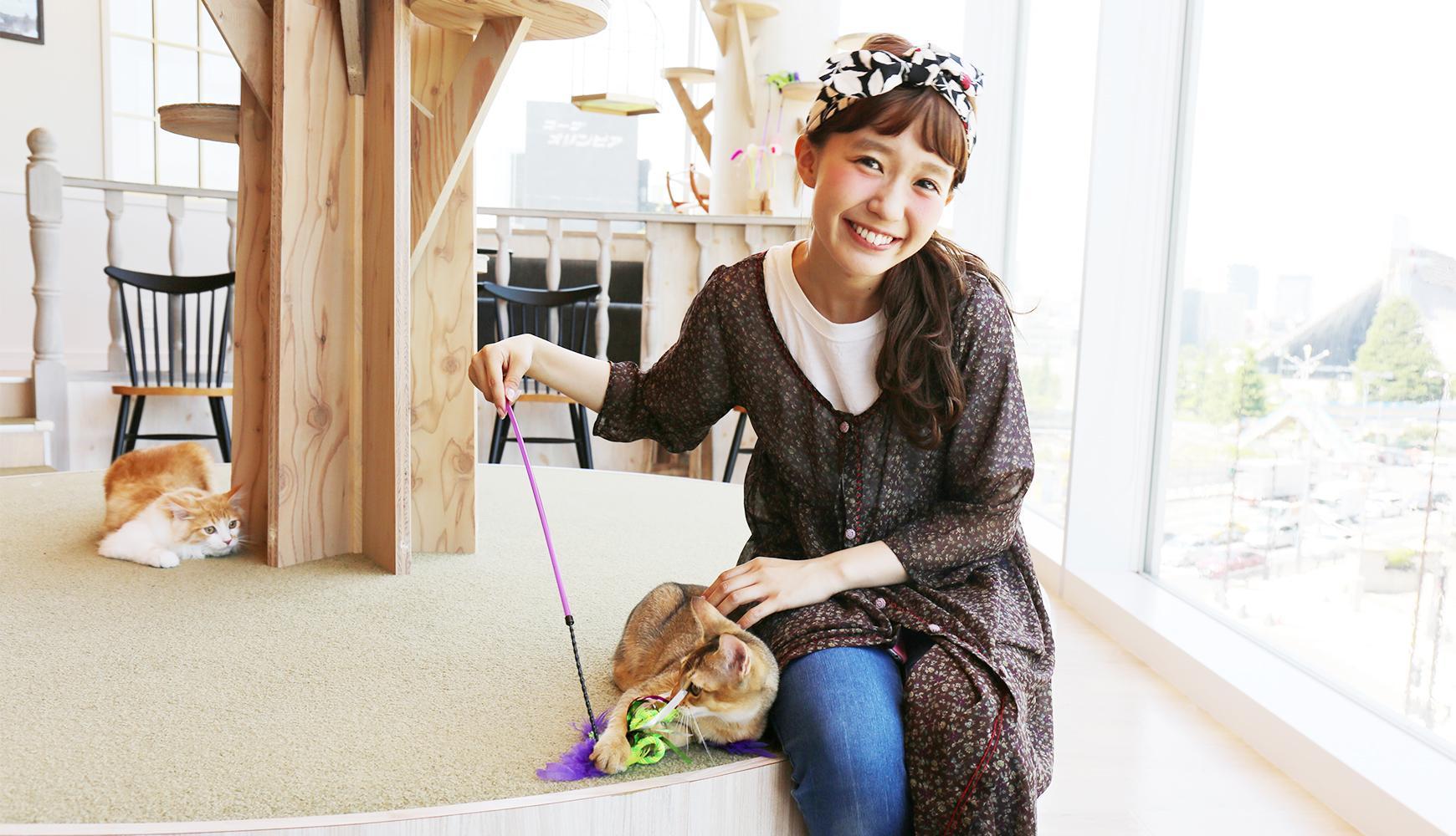 原宿で猫に癒やさされる♡ 話題の猫カフェ「MoCHA」にしばさきが潜入
