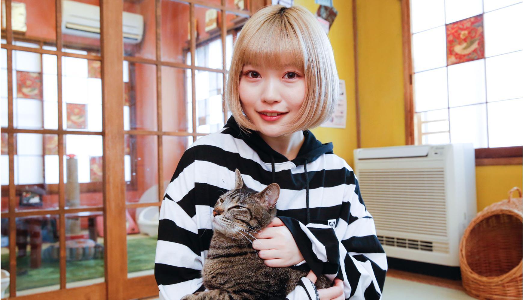 里親を探す猫カフェ「ネコリパブリック」を古関れんが体験レポート!